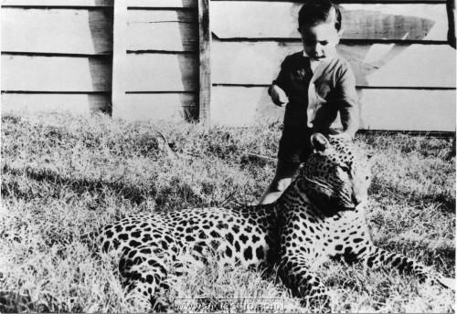 1962-Lorenzo-e-leopardo-in Ethiopia